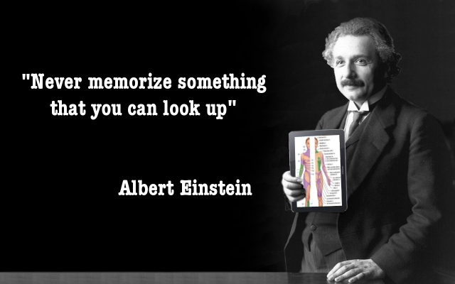 Albert Einstein Never Memorize something you can look up
