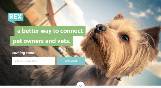 RexPetHealth Website