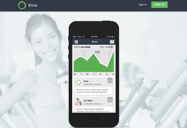 Ensa App website