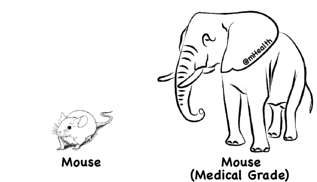 An elephant is just a medical grade mouse